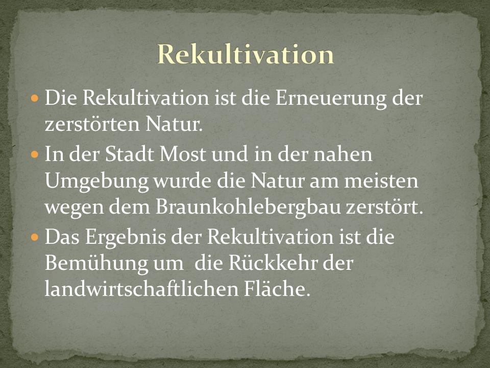 Die Rekultivation ist die Erneuerung der zerstörten Natur. In der Stadt Most und in der nahen Umgebung wurde die Natur am meisten wegen dem Braunkohle