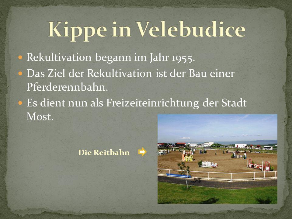 Rekultivation begann im Jahr 1955. Das Ziel der Rekultivation ist der Bau einer Pferderennbahn. Es dient nun als Freizeiteinrichtung der Stadt Most. D