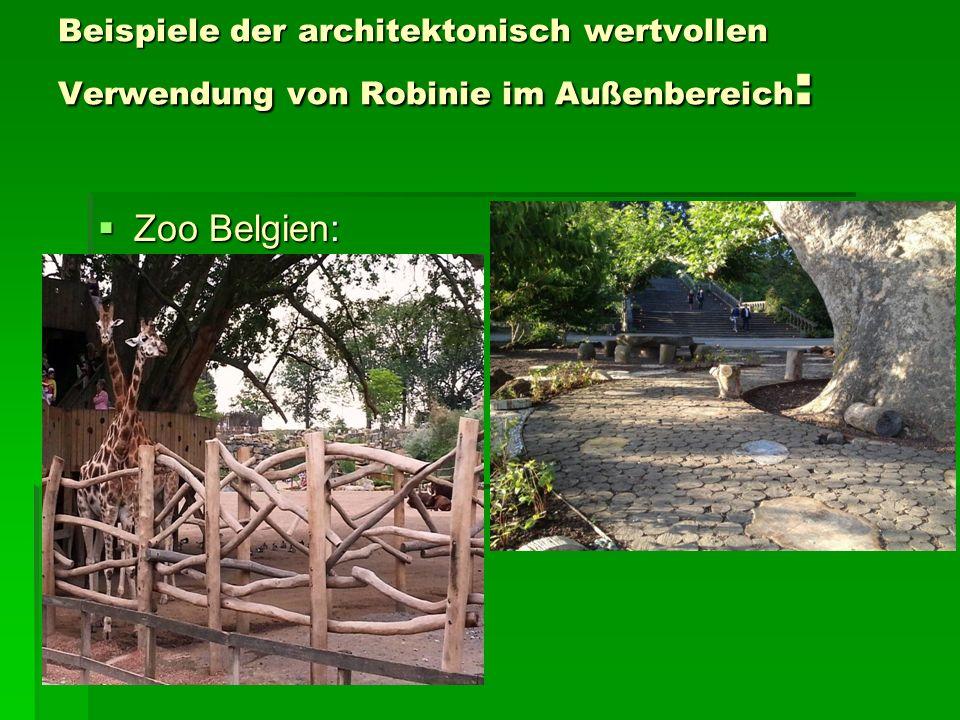 Beispiele der architektonisch wertvollen Verwendung von Robinie im Außenbereich :  Zoo Belgien: