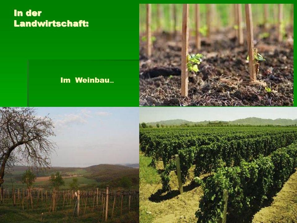 Im Weinbau … In der Landwirtschaft: