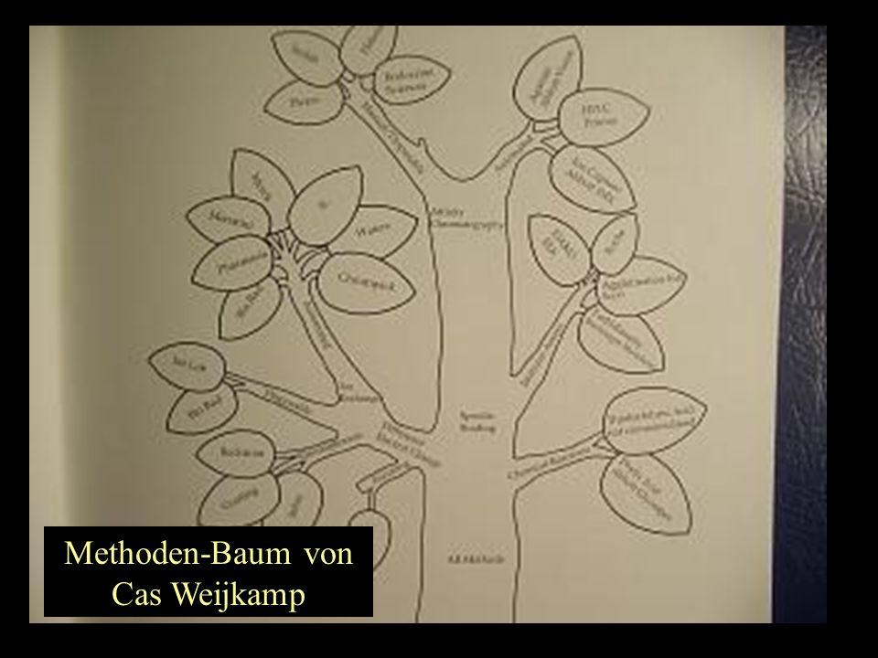 Methoden-Baum von Cas Weijkamp
