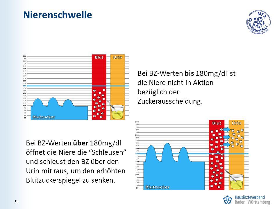 Nierenschwelle Bei BZ-Werten bis 180mg/dl ist die Niere nicht in Aktion bezüglich der Zuckerausscheidung.