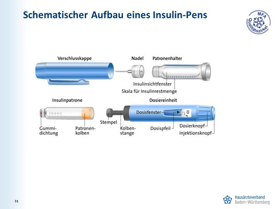 Schematischer Aufbau eines Insulin-Pens 31