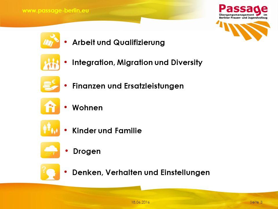 18.06.2016 www.passage-berlin.eu Seite 3 Finanzen und Ersatzleistungen Integration, Migration und Diversity Kinder und Familie Wohnen Drogen Denken, Verhalten und Einstellungen Arbeit und Qualifizierung