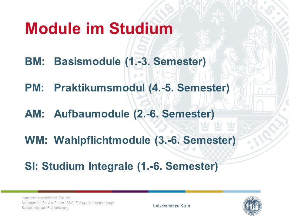 Module im Studium BM: Basismodule (1.-3. Semester) PM: Praktikumsmodul (4.-5.