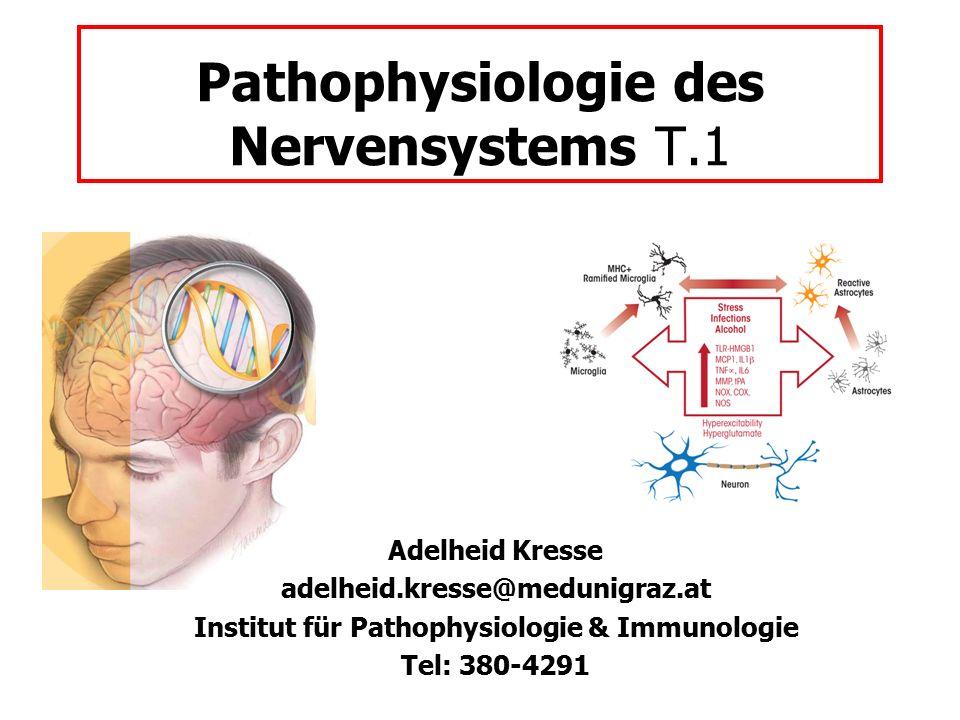Pathophysiologie des Nervensystems T.1 Adelheid Kresse adelheid.kresse@medunigraz.at Institut für Pathophysiologie & Immunologie Tel: 380-4291