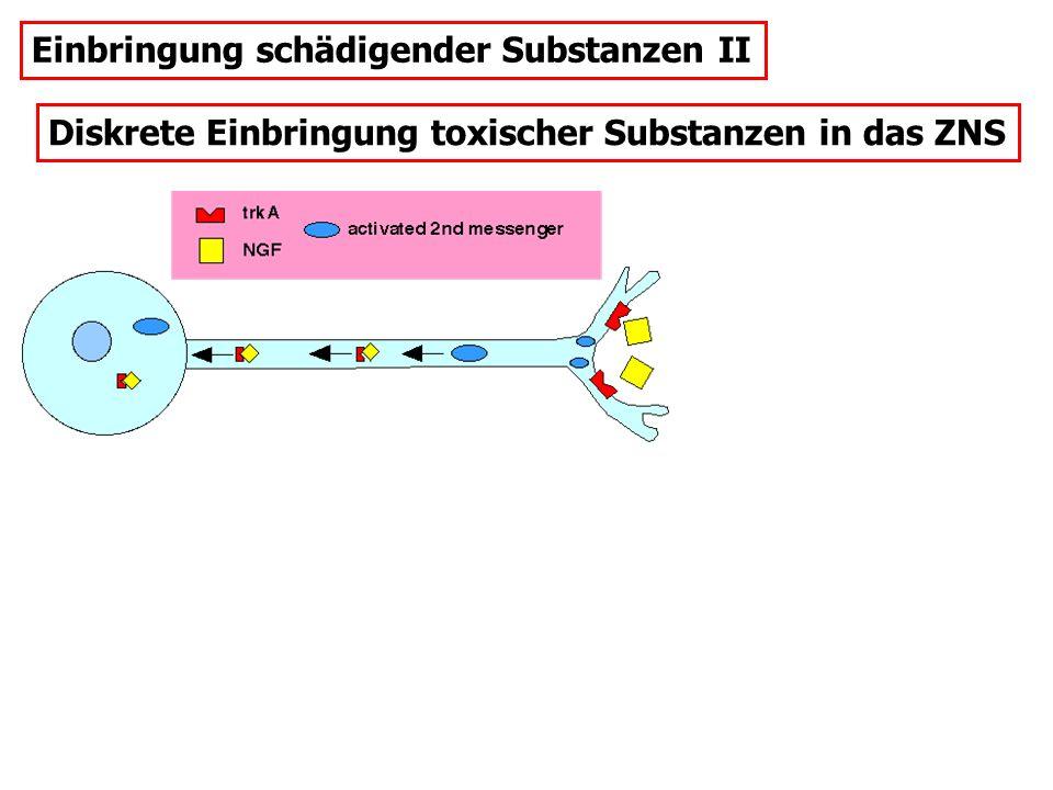 Diskrete Einbringung toxischer Substanzen in das ZNS Einbringung schädigender Substanzen II