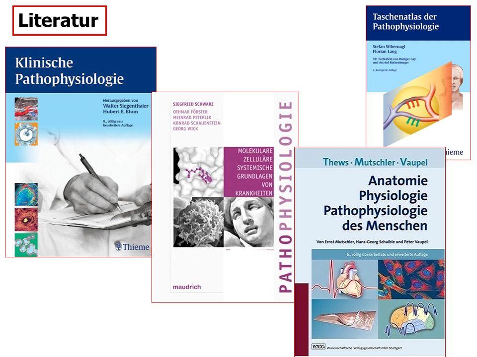 Autoimmun-Erkrankungen der motorischen Endplatte: 1 Myasthenia gravis 2 Myasthenisches Syndrom Lambert-Eaton