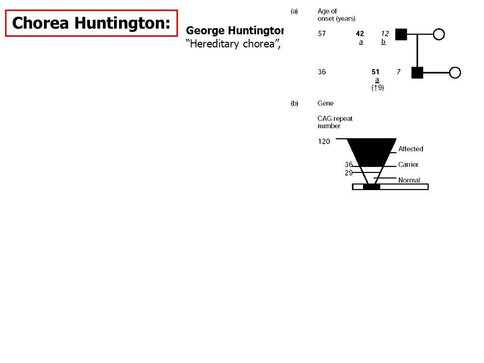 "Chorea Huntington: George Huntington ""Hereditary chorea"", 1872"