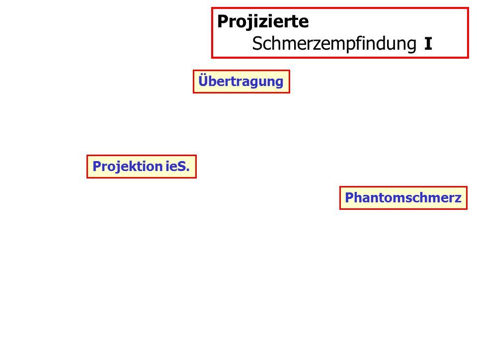 Übertragung Projizierte Schmerzempfindung I Projektion ieS. Phantomschmerz