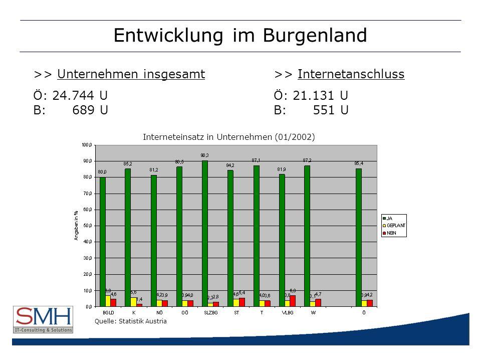 Entwicklung im Burgenland >> Unternehmen insgesamt>> Internetanschluss Ö: 24.744 UÖ: 21.131 U B: 689 U B: 551 U Quelle: Statistik Austria Interneteinsatz in Unternehmen (01/2002)