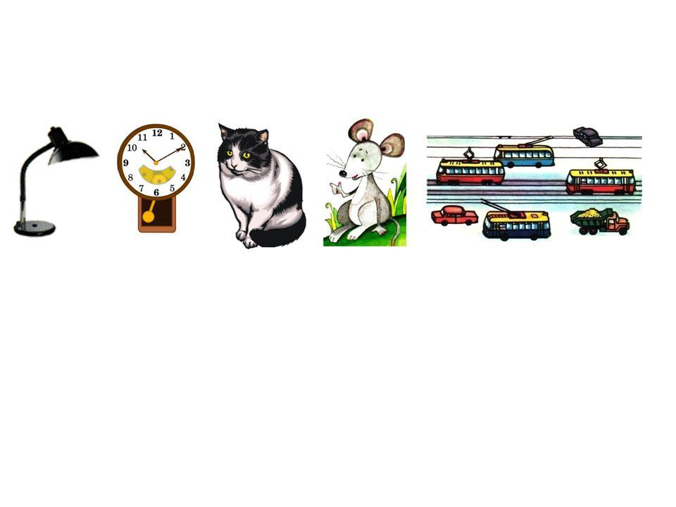 die Lampe die Uhr die Katze die Maus die Straße