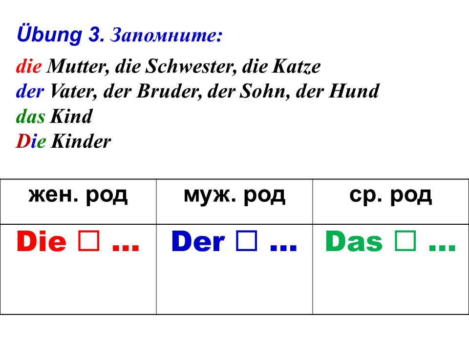 Übung 2. Lies deutsche Katzennamen. a) Carlo, Spiegel, Gustav; b) Mieze, Muschi, Minka.
