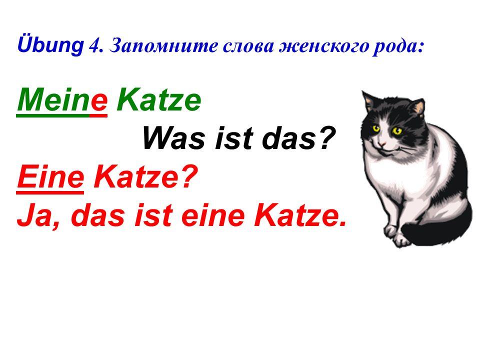 Übung 4.Запомните слова женского рода: Meine Katze Was ist das.