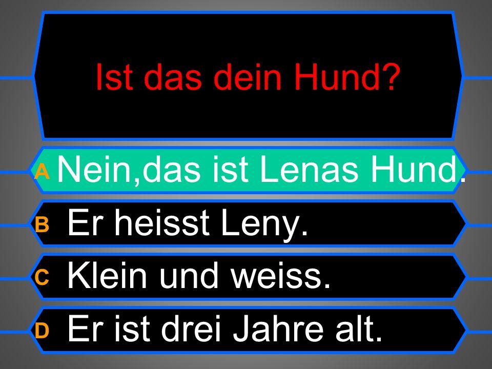 Ist das dein Hund. A Nein,das ist Lenas Hund. B Er heisst Leny.