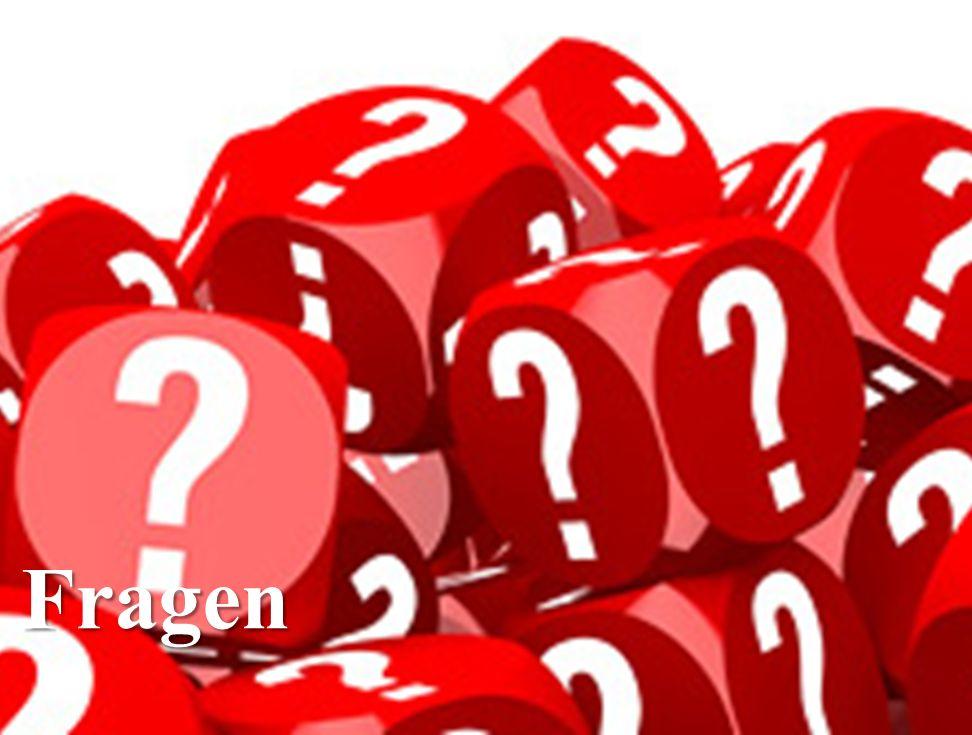 13 Fragen