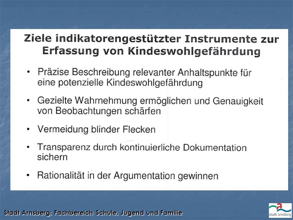 Stadt Arnsberg; Fachbereich Schule, Jugend und Familie