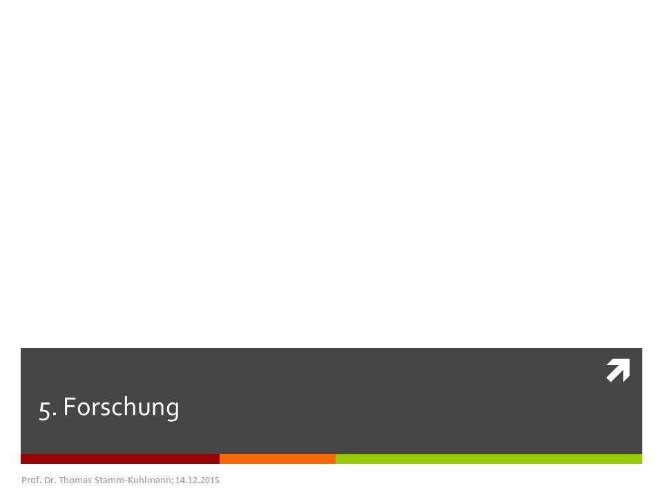  5. Forschung Prof. Dr. Thomas Stamm-Kuhlmann; 14.12.2015