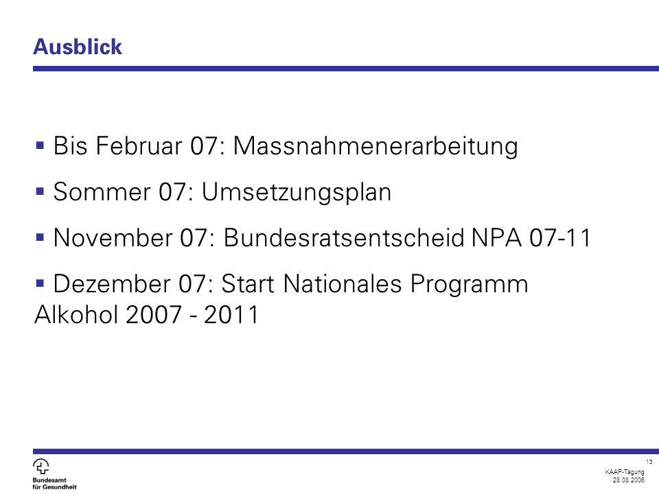KAAP-Tagung 28.08.2006 13 Ausblick  Bis Februar 07: Massnahmenerarbeitung  Sommer 07: Umsetzungsplan  November 07: Bundesratsentscheid NPA 07-11 