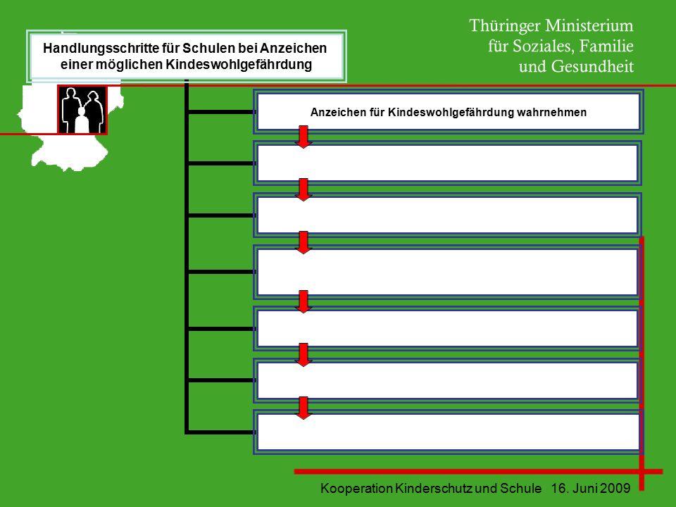 Kooperation Kinderschutz und Schule 16. Juni 2009