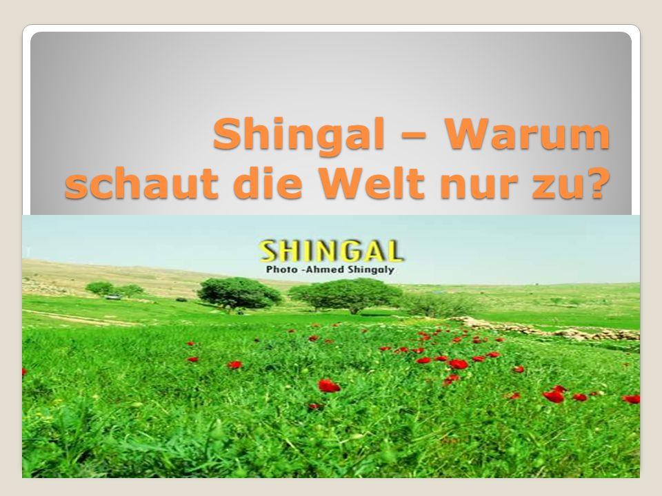 Shingal – Warum schaut die Welt nur zu