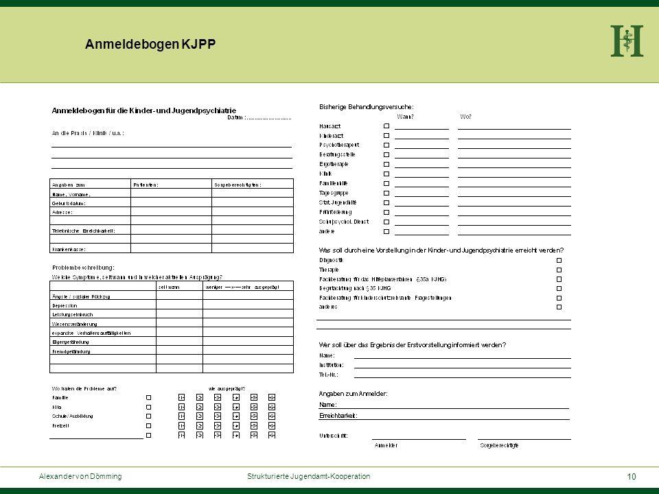10 Alexander von Dömming Strukturierte Jugendamt-Kooperation Anmeldebogen KJPP