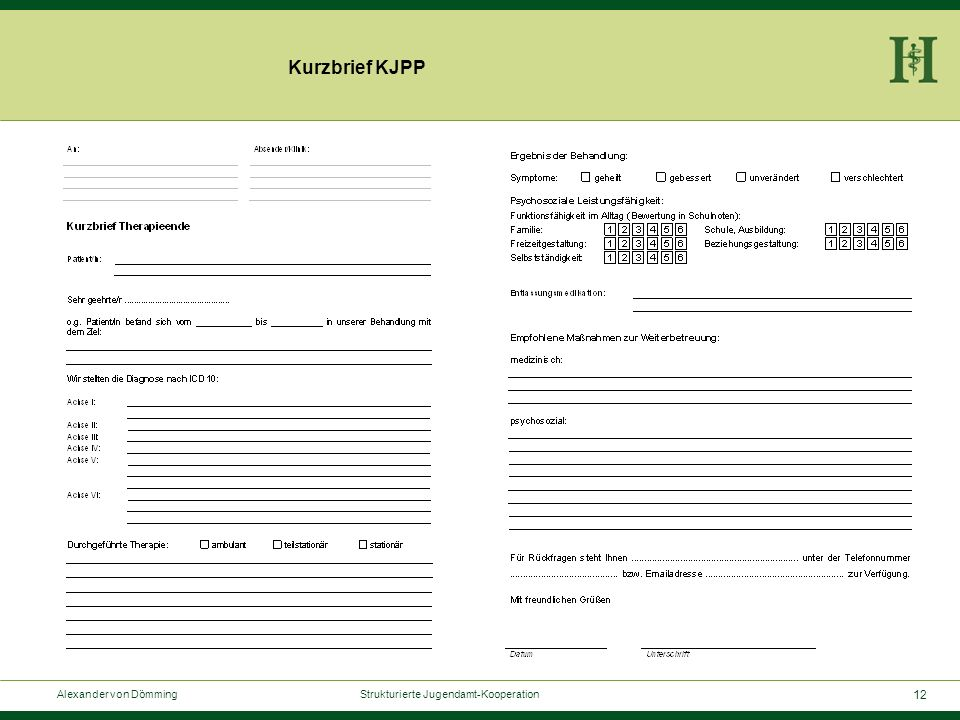 12 Alexander von Dömming Strukturierte Jugendamt-Kooperation Kurzbrief KJPP