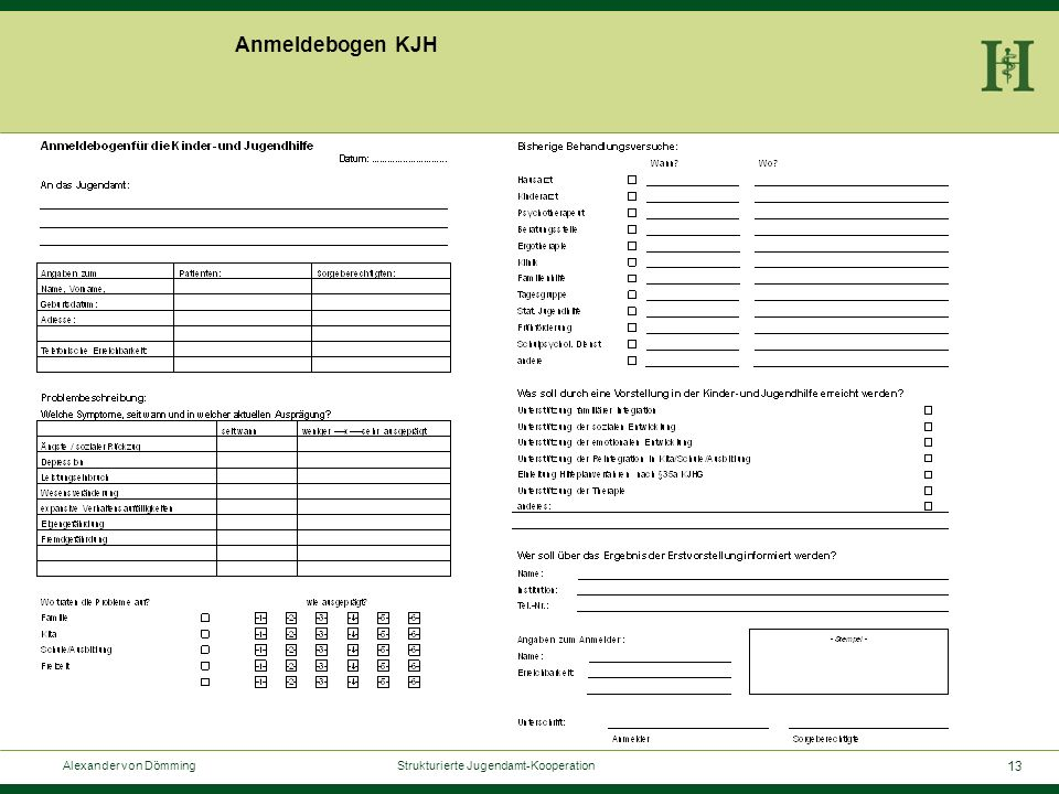 13 Alexander von Dömming Strukturierte Jugendamt-Kooperation Anmeldebogen KJH