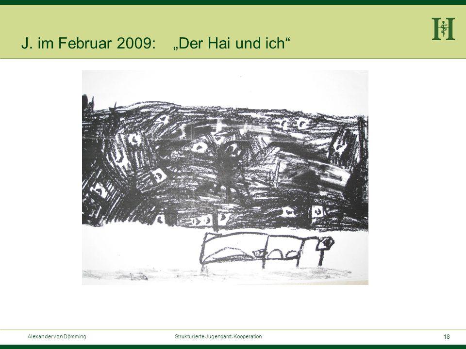 """18 Alexander von Dömming Strukturierte Jugendamt-Kooperation J. im Februar 2009: """"Der Hai und ich"""