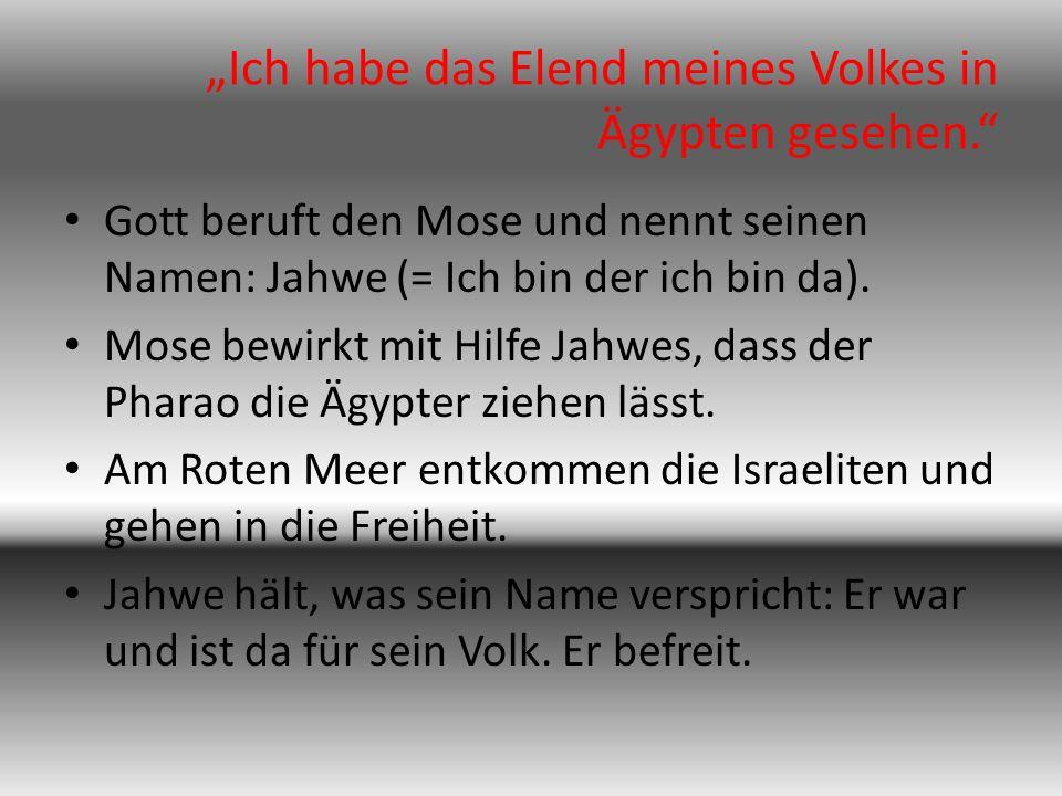 """""""Ich habe das Elend meines Volkes in Ägypten gesehen. Gott beruft den Mose und nennt seinen Namen: Jahwe (= Ich bin der ich bin da)."""