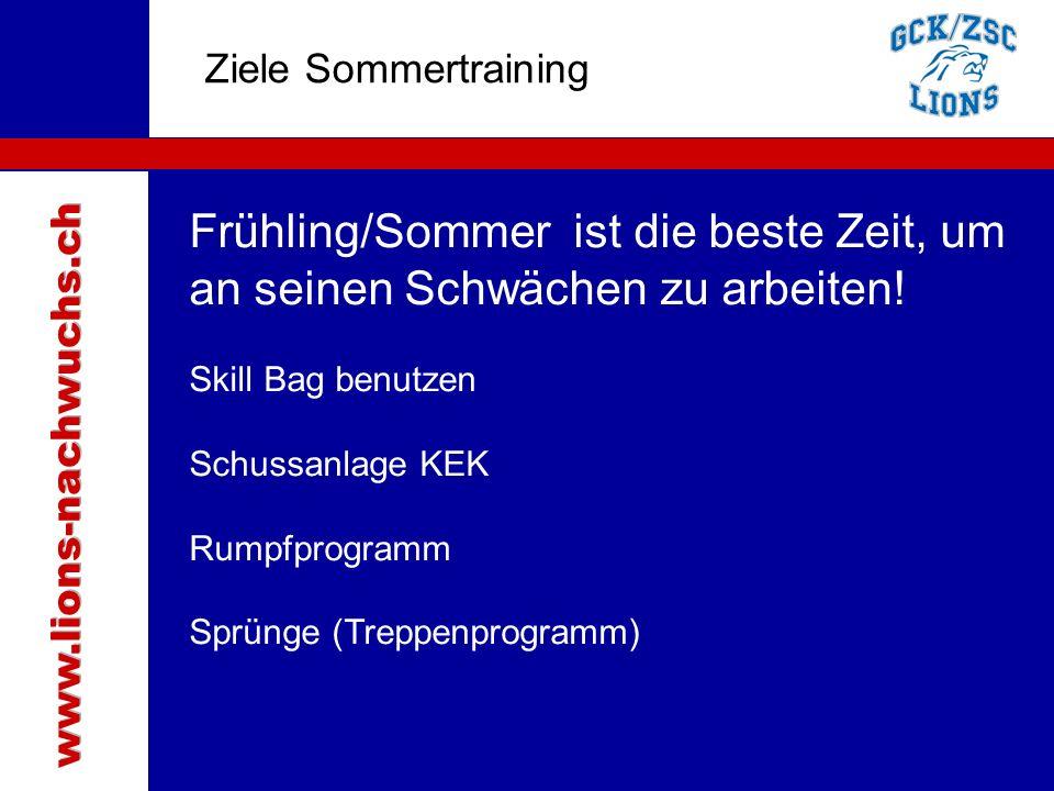 Traktanden Ziele Sommertraining Frühling/Sommer ist die beste Zeit, um an seinen Schwächen zu arbeiten.