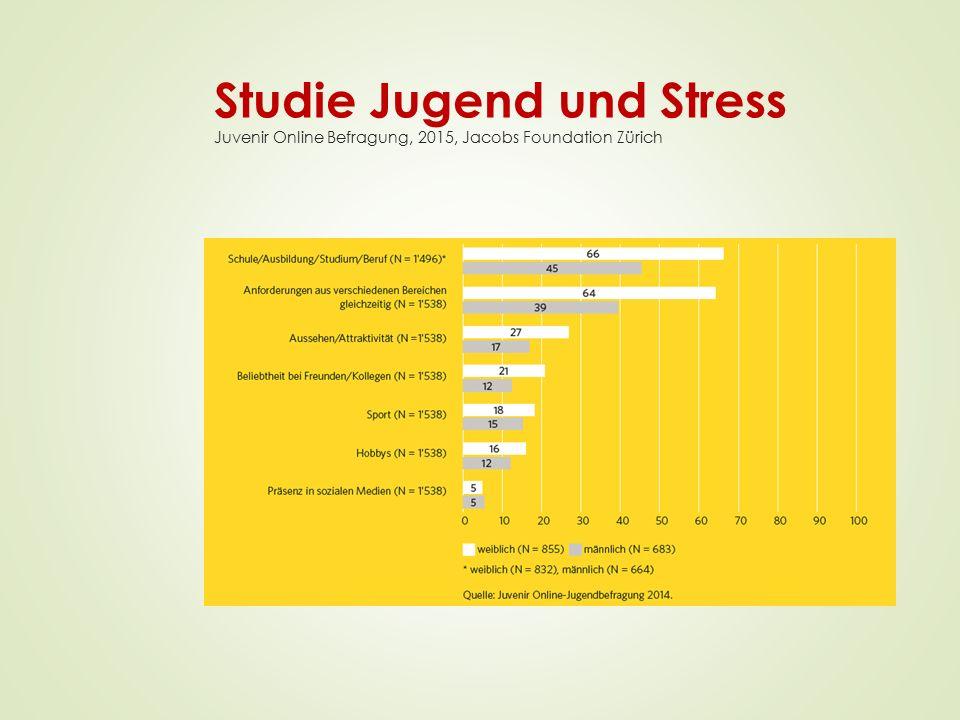 Studie Jugend und Stress Juvenir Online Befragung, 2015, Jacobs Foundation Zürich