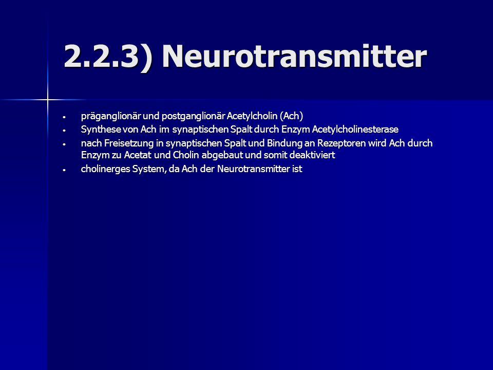 2.2.3) Neurotransmitter präganglionär und postganglionär Acetylcholin (Ach) präganglionär und postganglionär Acetylcholin (Ach) Synthese von Ach im sy