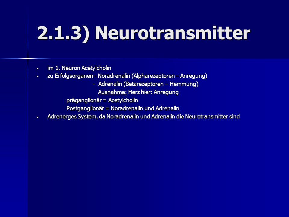 2.1.3) Neurotransmitter im 1. Neuron Acetylcholin im 1. Neuron Acetylcholin zu Erfolgsorganen - Noradrenalin (Alpharezeptoren – Anregung) zu Erfolgsor