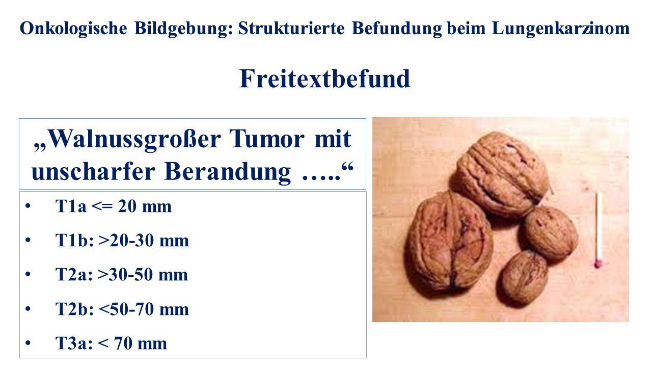 Onkologische Bildgebung: Strukturierte Befundung beim Lungenkarzinom Freitextbefund Onkologische Bildgebung: Strukturierte Befundung beim Lungenkarzin