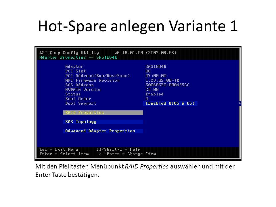 Hot-Spare anlegen Variante 1 Mit den Pfeiltasten Menüpunkt RAID Properties auswählen und mit der Enter Taste bestätigen.