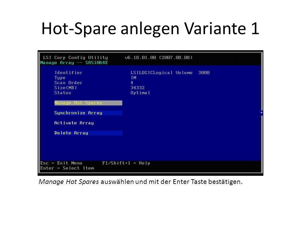 Hot-Spare anlegen Variante 1 Manage Hot Spares auswählen und mit der Enter Taste bestätigen.