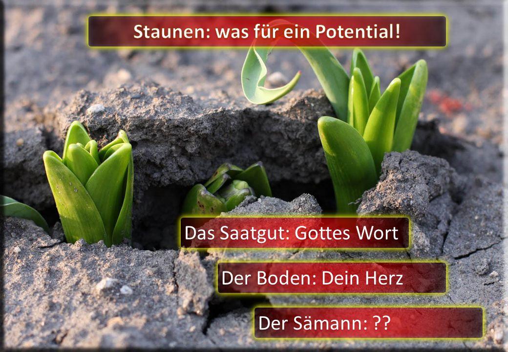 Das Saatgut: Gottes Wort Der Boden: Dein Herz Der Sämann: