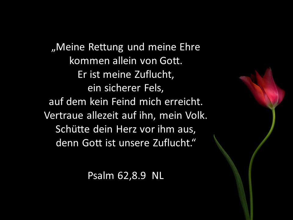 """""""Meine Rettung und meine Ehre kommen allein von Gott. Er ist meine Zuflucht, ein sicherer Fels, auf dem kein Feind mich erreicht. Vertraue allezeit au"""