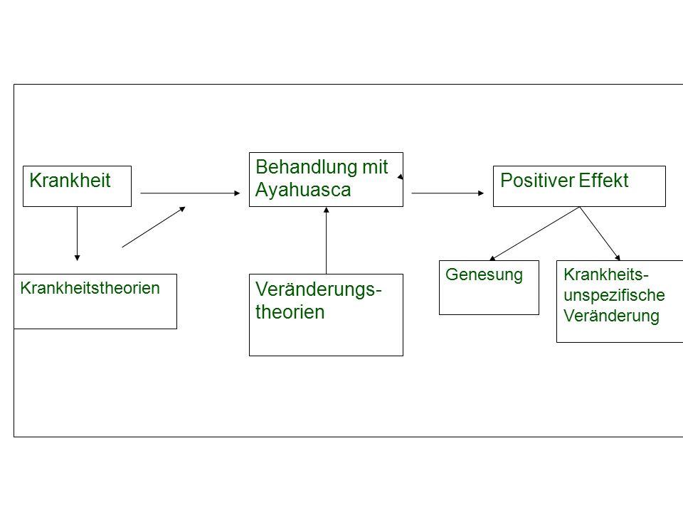 Schematische Darstellung der Heilungstheorie Krankheit Behandlung mit Ayahuasca Positiver Effekt Veränderungs- theorien GenesungKrankheits- unspezifische Veränderung Krankheitstheorien