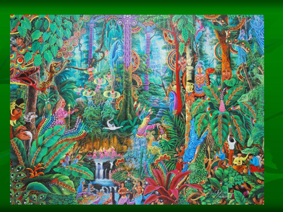 """Zitat zur Ayahuascaerfahrung """"Es gibt tausende von Arten wie du sterben kannst, an Altersschwäche, vom Auto überfahren werden, vergiftet werden."""