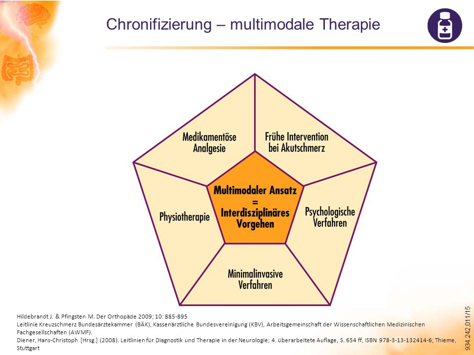 934.242,011/15 Chronifizierung – multimodale Therapie Hildebrandt J.