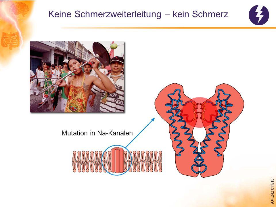 934.242,011/15 Keine Schmerzweiterleitung – kein Schmerz Mutation in Na-Kanälen