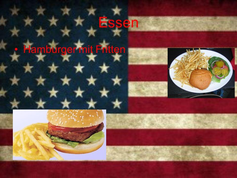 Essen Hamburger mit Fritten