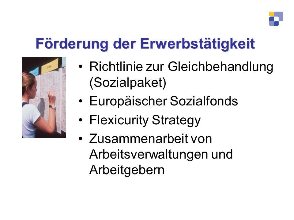 Förderung der Erwerbstätigkeit Richtlinie zur Gleichbehandlung (Sozialpaket) Europäischer Sozialfonds Flexicurity Strategy Zusammenarbeit von Arbeitsv