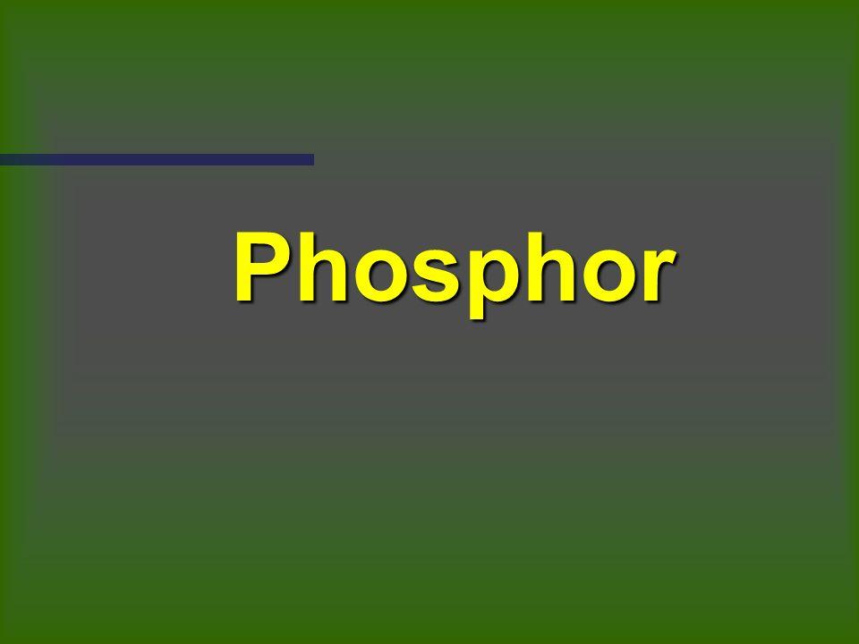 Resultatsvergleich Aufgabe 1: Phosphormangel Aufgabe 2: unterschiedliche Stickstoff- gaben Aufgabe 3: Kaliummangel Aufgabe 4: Magnesiummangel Aufgabe 5: Stickstoffmangel Aufgabe 6: Kaliummangel