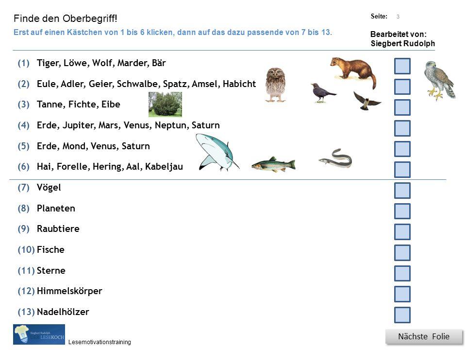 Übungsart: Titel: Quelle: Seite: Bearbeitet von: Siegbert Rudolph Lesemotivationstraining 3 Finde den Oberbegriff.