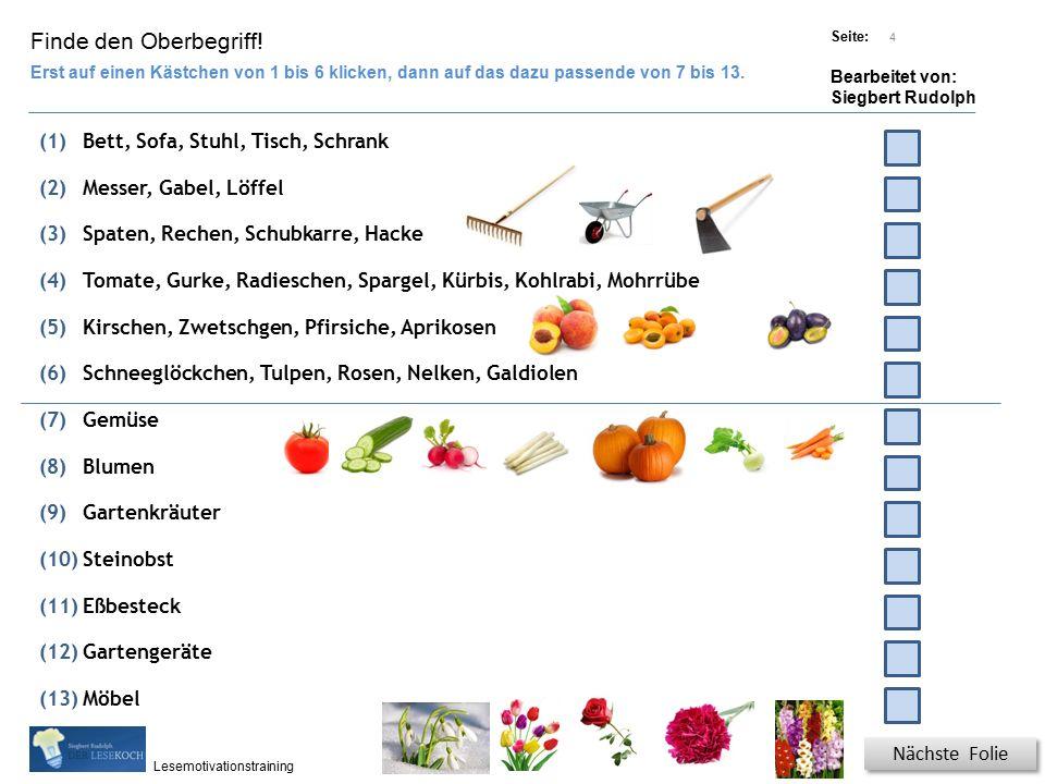Übungsart: Titel: Quelle: Seite: Bearbeitet von: Siegbert Rudolph Lesemotivationstraining 4 Finde den Oberbegriff.