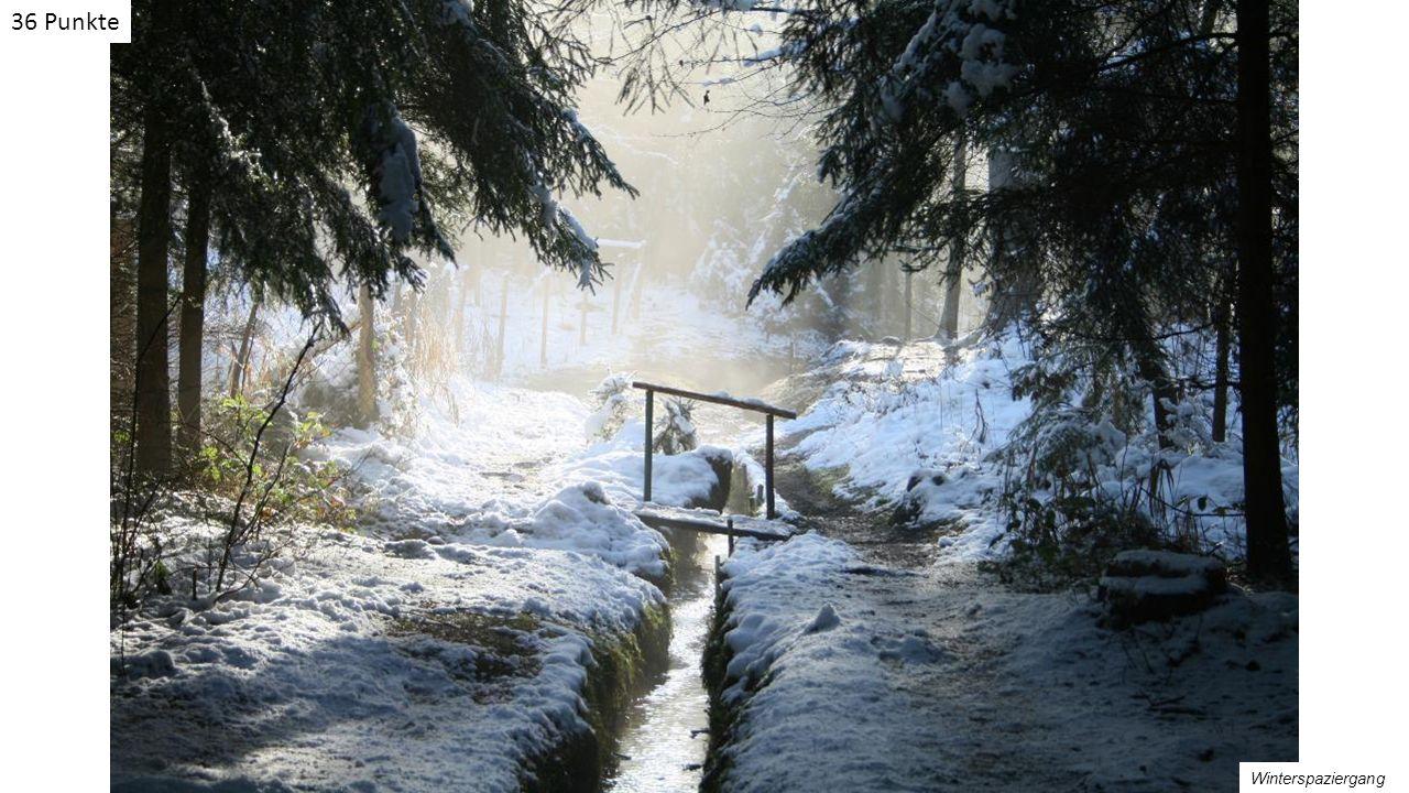 Winterspaziergang 36 Punkte