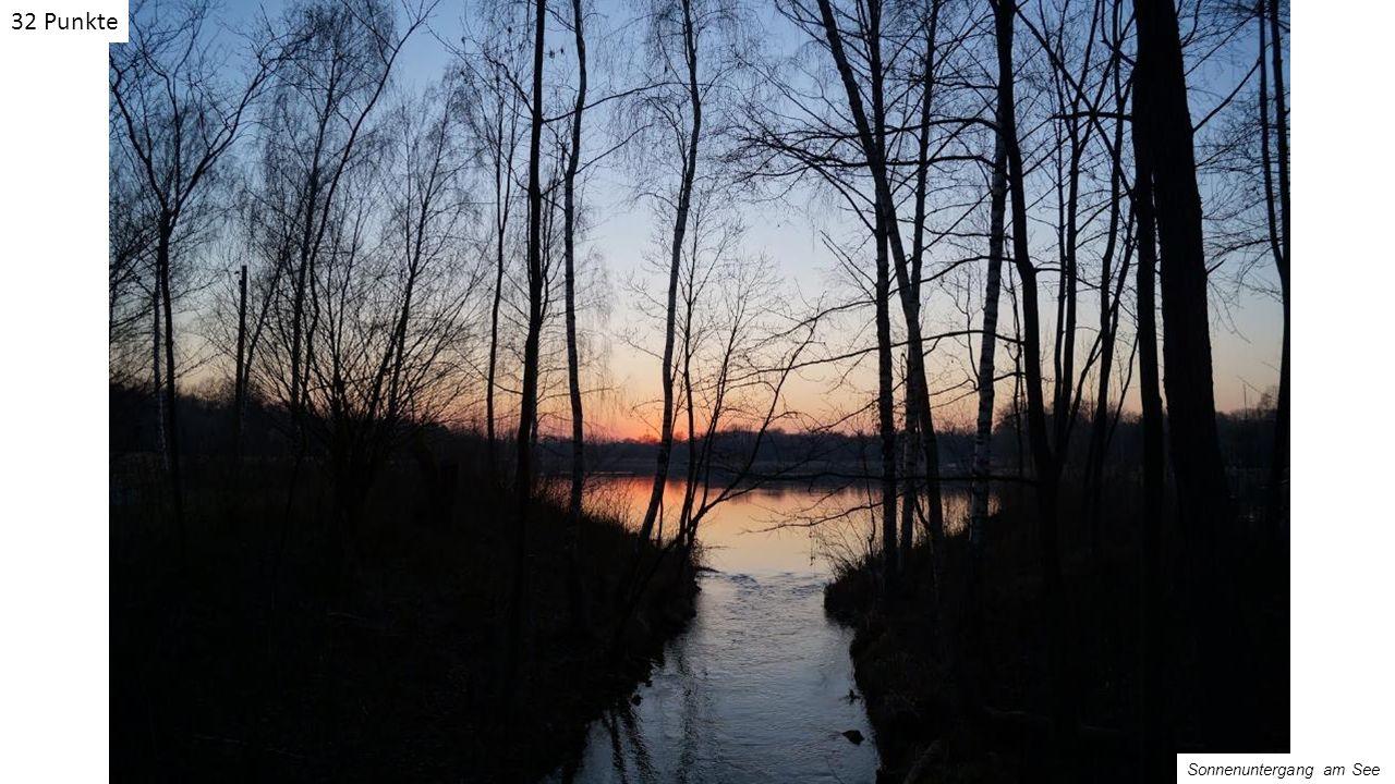 Sonnenuntergang am See 32 Punkte